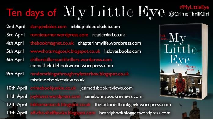 MLE blog tour poster