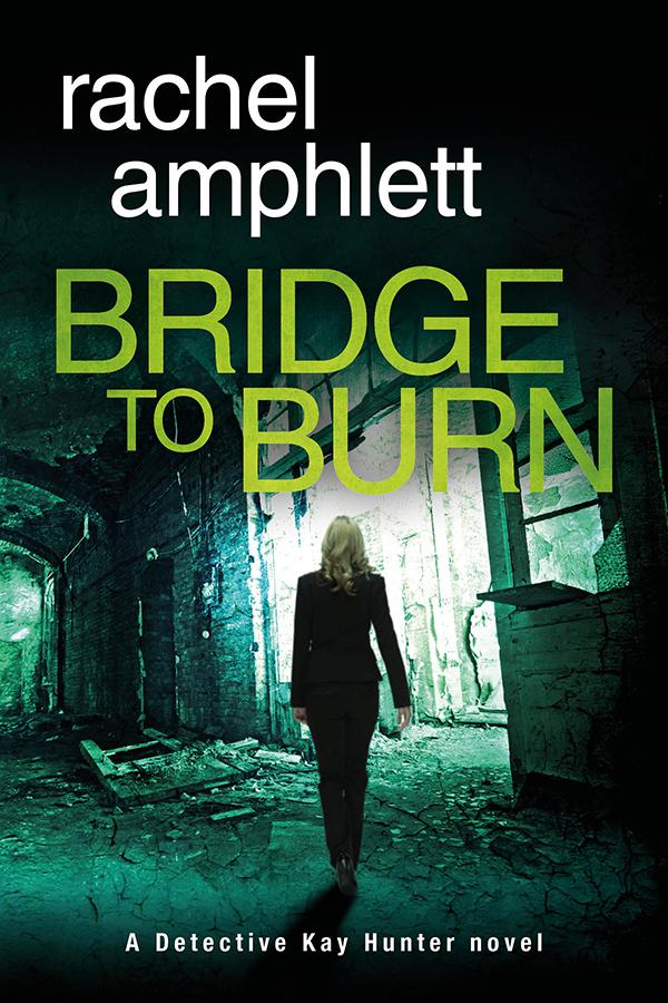 Bridge to Burn Cover MEDIUM WEB